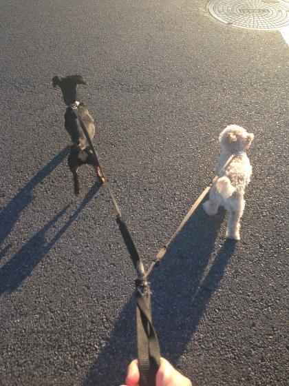 Walking on sunshine!