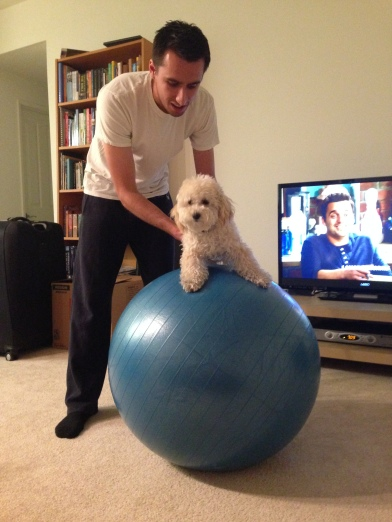 Laci on exercise ball