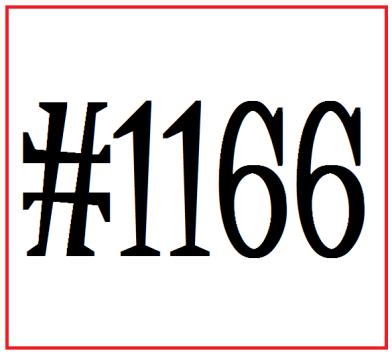 bib number